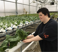 TAC grower hydroponics